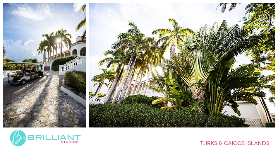 Parrot Cay Weddings