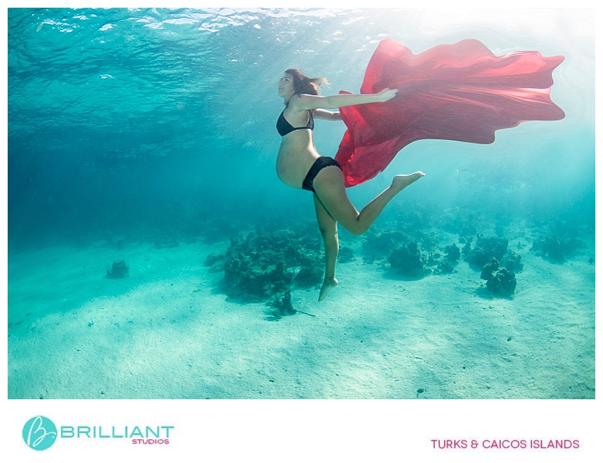 underwater photography in Coral gardens